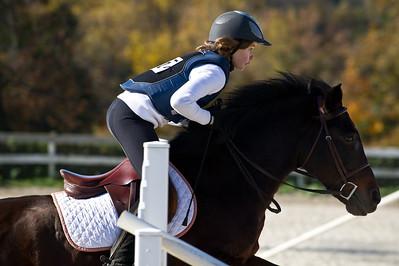 2011-11-05 Ashford Horse Show