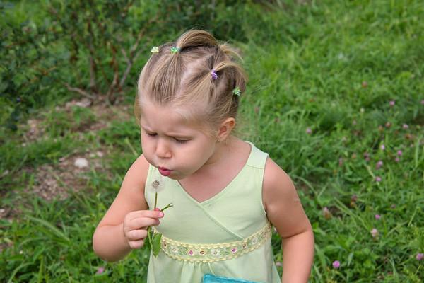 Farm day - Aug 10, 2008