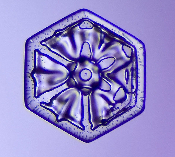 snowflake-5539-Edit.jpg