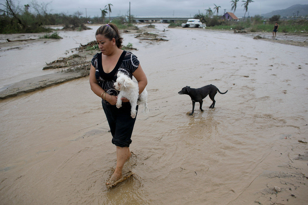 . Piedad Velazquez carries her puppy across a river bed on her way to check on neighbors whose trailer home was pushed away by flood water and high winds during Hurricane Odile in Los Cabos, Mexico, Monday, Sept. 15, 2014. (AP Photo/Victor R. Caivano)