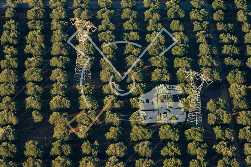 aerial image of transmission towers in the olive tree fields of Brindisi.