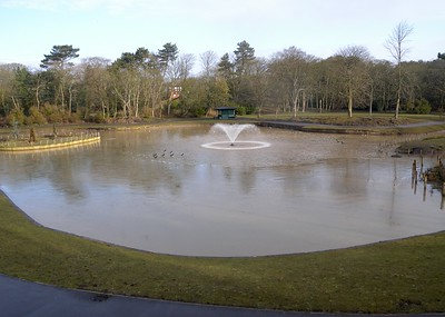 Botanic Gardens 2010
