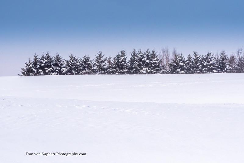 Tom von Kapherr Photography-7457.jpg
