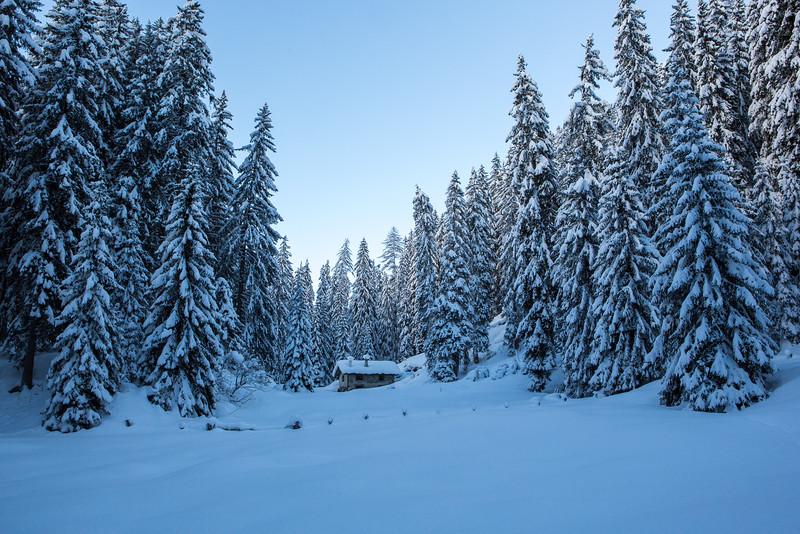 Rheinwald-Winter-D-Aebli-056.jpg