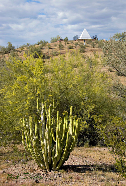 Governor Hunt's Tomb in Papago Park.