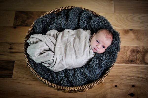 Sheeva Newborn #3