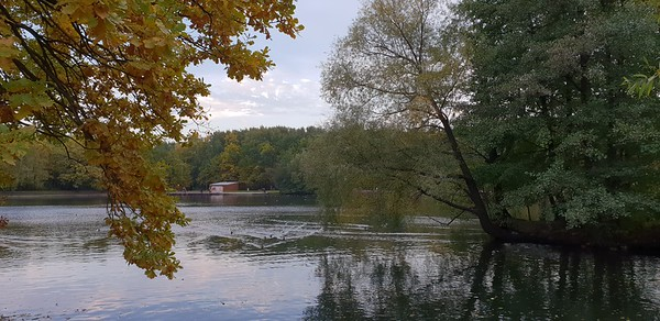 2018-10-07 Терлецкий парк