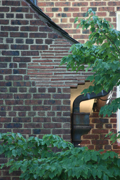 Princeton Architecture _12.jpg