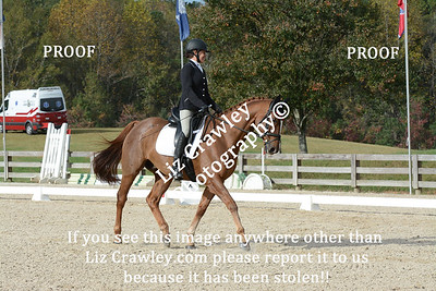 10.24.2020 CHATT HILLS HT  PLEASE CUT AND PASTE THIS LINK INTO YOUR BROWSER IF YOU WOULD LIKE TO ORDER DIGITAL PHOTOS: www.lizcrawleyphotography.com/eventing-ordering