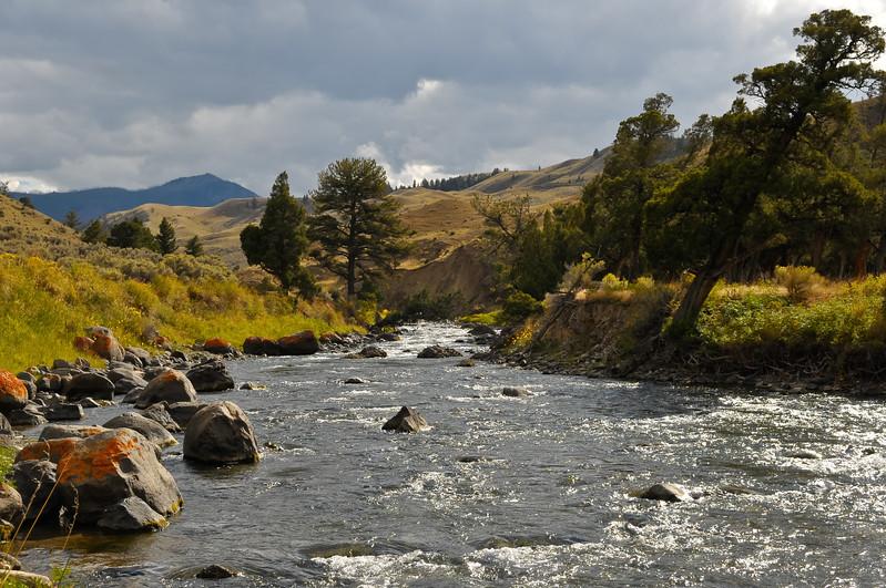 Yellowstone National Park.  Yellowstone River.