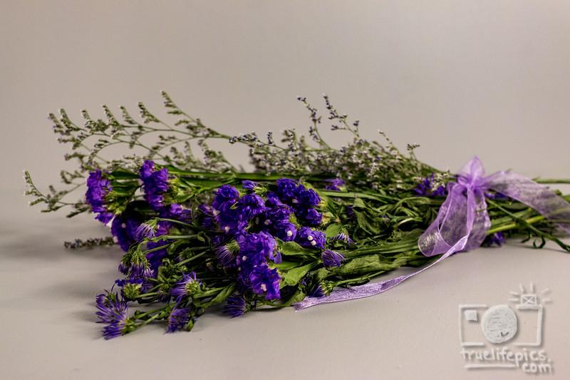 20180525 Purple ColorStoryCollab (23).jpg