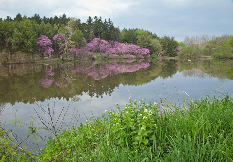 Spring13-0465.jpg