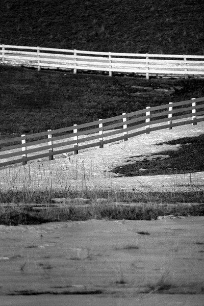 Fence - Ontario, Canada - About 1986