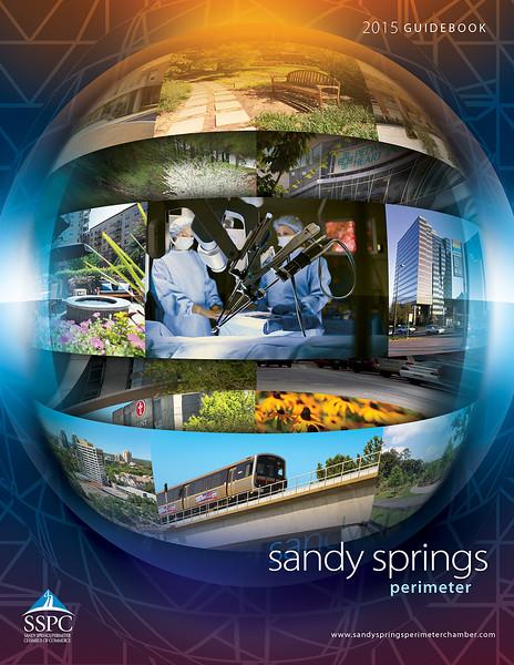 Sandy Springs NCG 2015 - Cover (3).jpg