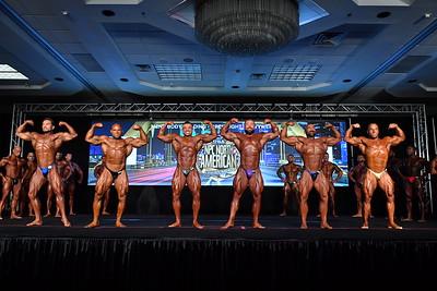 Men's Bodybuilding Open LHW