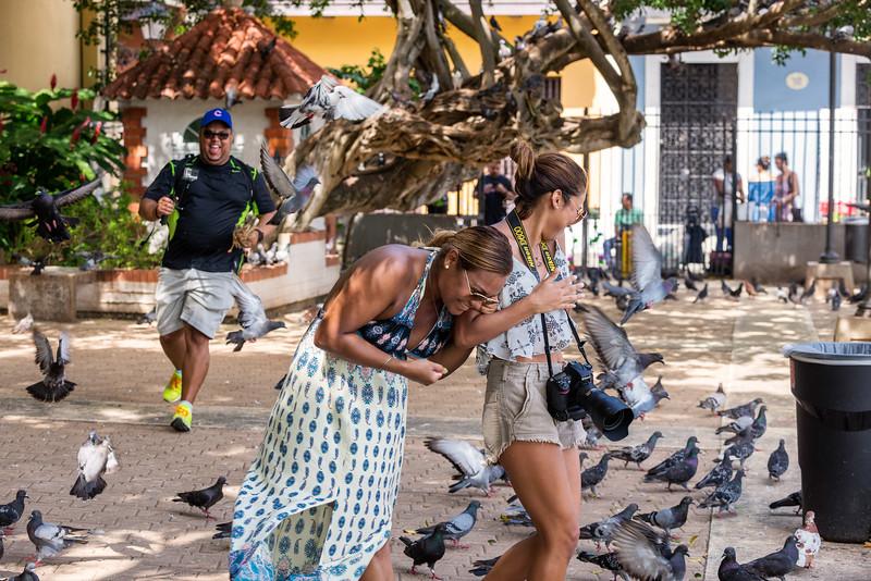 Puerto Rico VacationAugust 22, 2017 455.jpg