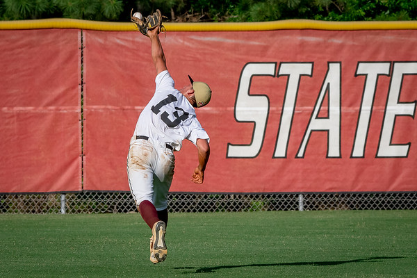 Piedmont Baseball 7.2.2020