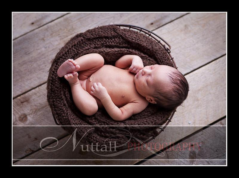 Noah Newborn 19.jpg