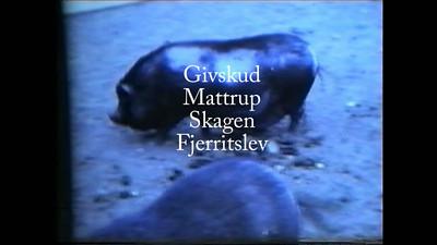 Givskud, Mattrup,Skagen, Fjerritslev