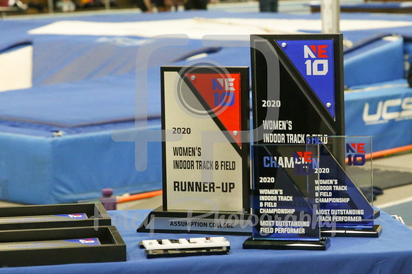 2020 Northeast-10 Indoor Track and Field Championship