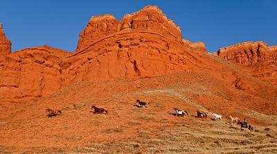 Wyoming Autumn Horses & Icons 1