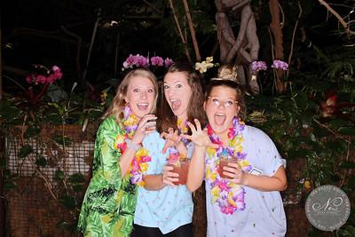 Aloha Tropics (individual photos)