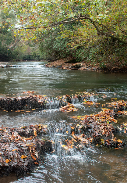Cascades with Leaves on the Etowah