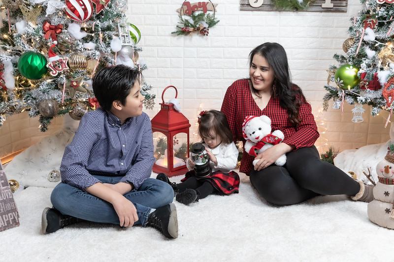 12.21.19 - Fernanda's Christmas Photo Session 2019 - -15.jpg