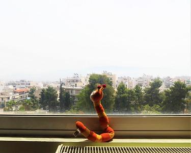 Quarantine's Window