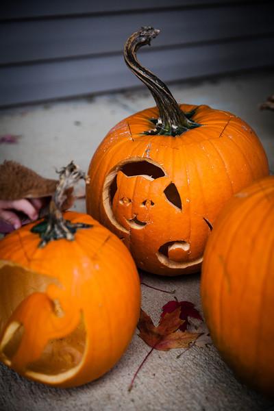halloween at the beyers (26 of 56).jpg
