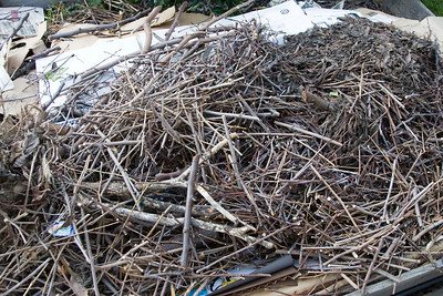 Basic Composting