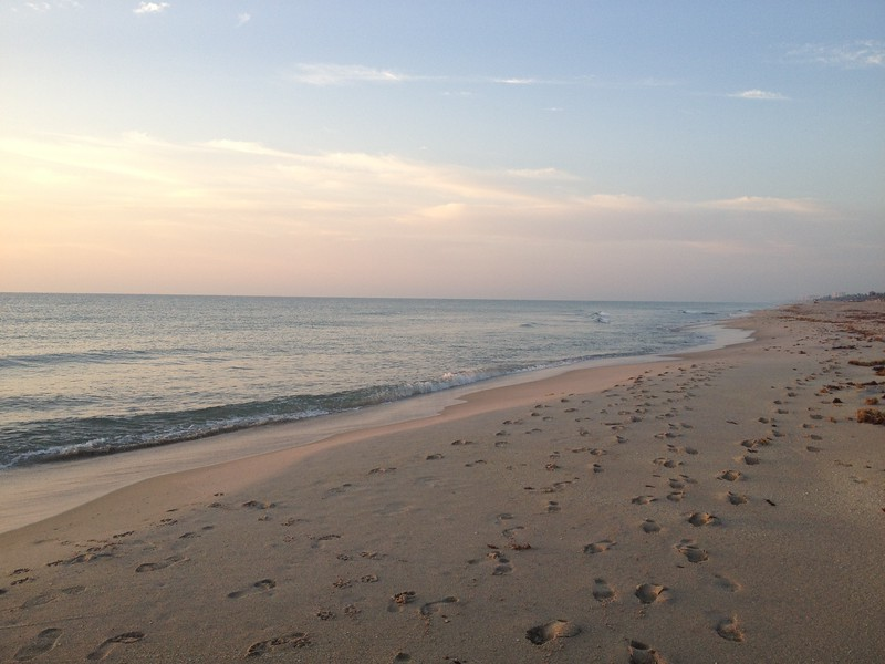 The beach this morning