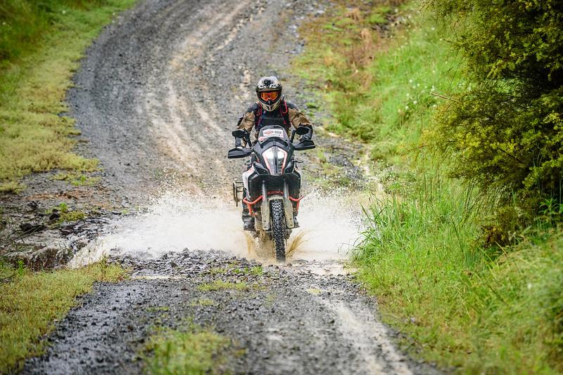 2018 KTM New Zealand Adventure Rallye - Northland (372).jpg