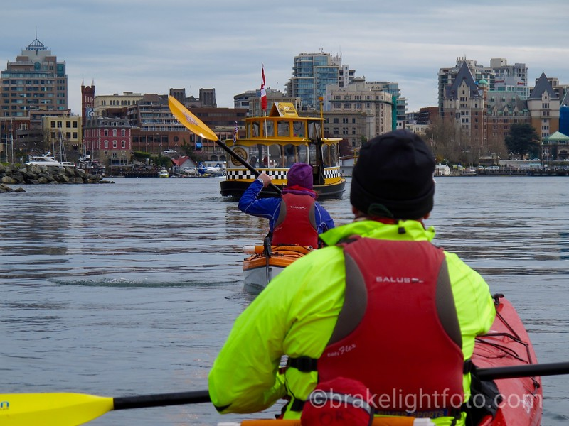 Kayakers & Harbour Ferry