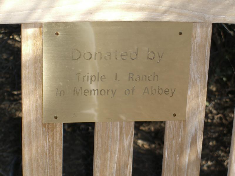 Abbey's bench talking rock.jpg