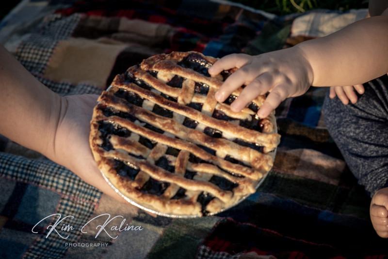Pie-06242.JPG