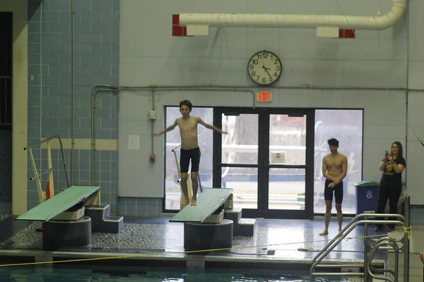 Diving Regionals 2-15-2019