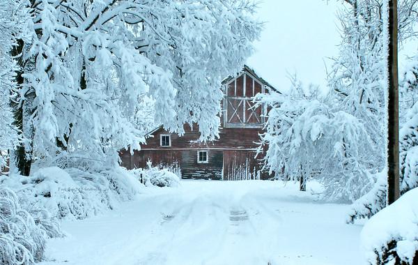 Nebraska Winter Barns