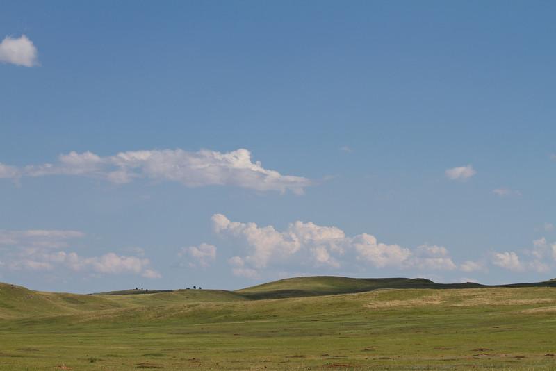 Custer State Park Prairie