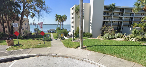 Daily sightings...2021-02-23...Turner Park, Clearwater, FL.