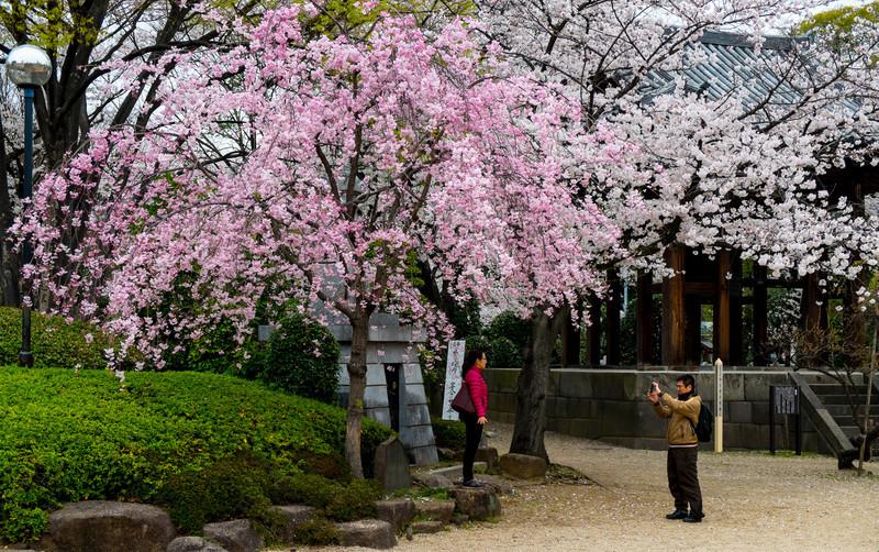 Tokyo Day 2 (104 of 280).jpg
