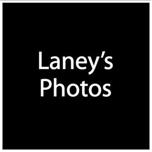 Laney's Files