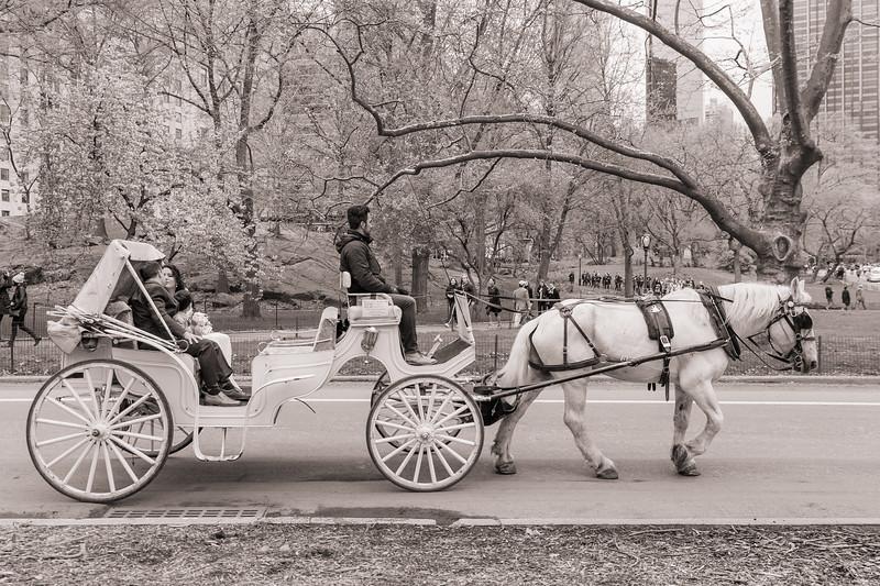Central Park Wedding - Diana & Allen (22).jpg