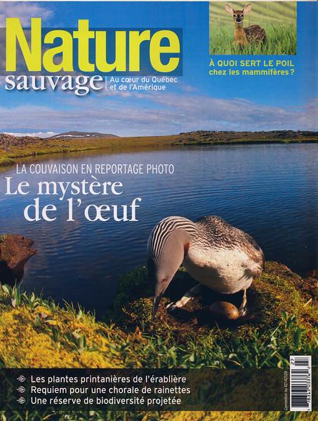 NatureSauvageMagazine