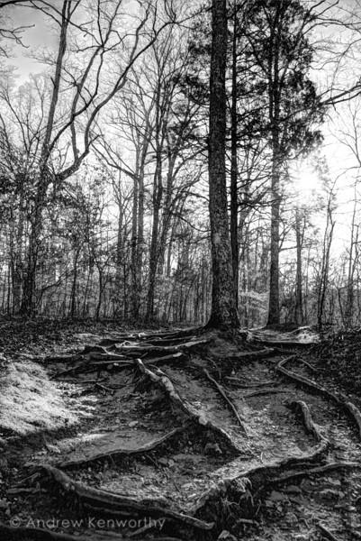 Old Stone Fort TN 102.jpg