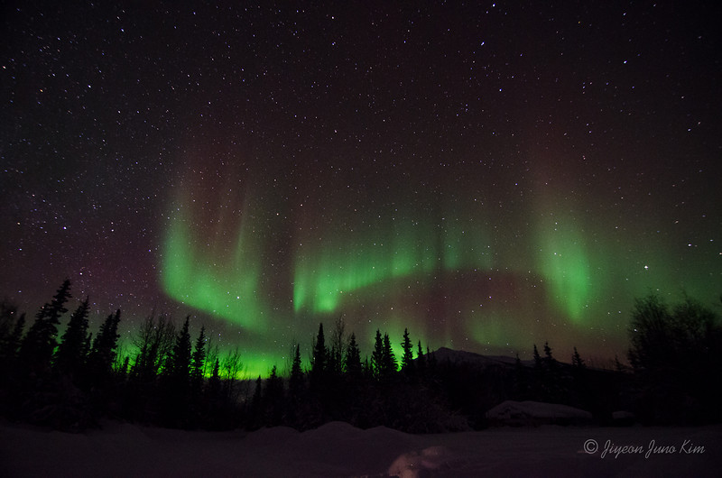 USA-Alaska-Wiseman-Aurora-2834.jpg