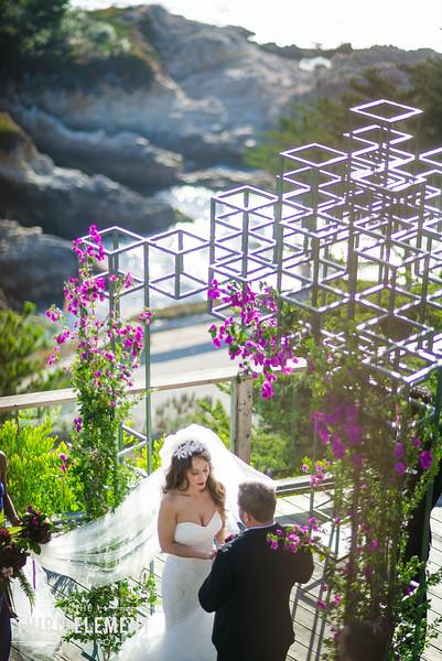 Third Element Photo Co Lina + Rett Carmel Bay Area Wedding Photographer_0034.jpg