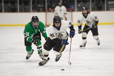 2020.02.07 Ice Hockey: Loudoun Valley/Woodgrove @ Tuscarora/Westfield