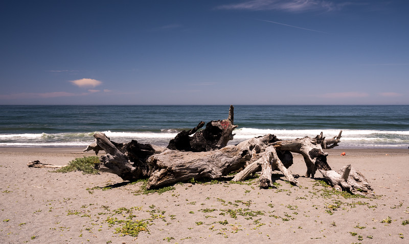 Gold Bluff's Beach, South of Crescent City