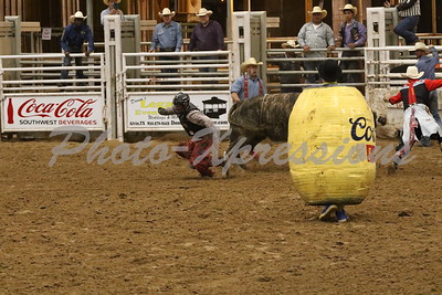 Bull Fighting Friday Night